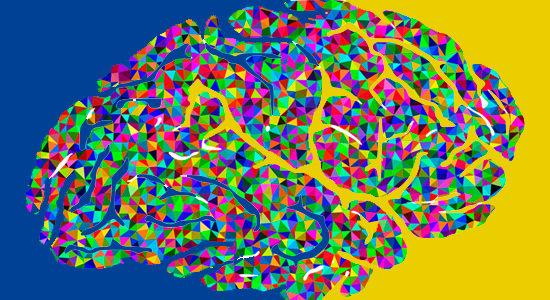 Neurociencia frente a Neuromarketing